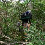 Bushwacking to high camp.