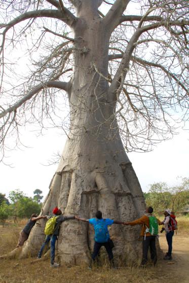 Gorongosa Vinho Community Visit - 1 (1)